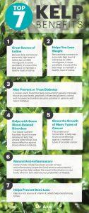 Top 7 Kelp Benefits